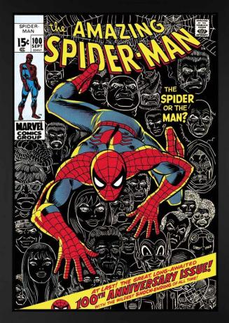 sle-the-amazing-spider-man-100-the-spider-or-the-man-fbc
