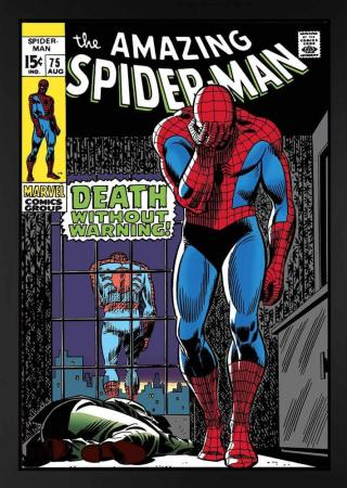 sle-the-amazing-spider-man-75-death-without-warning-fbc